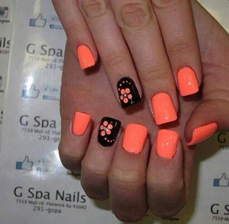 Black Orange Flower Flowers