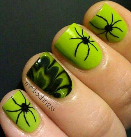 Halloween Spider Home Cool
